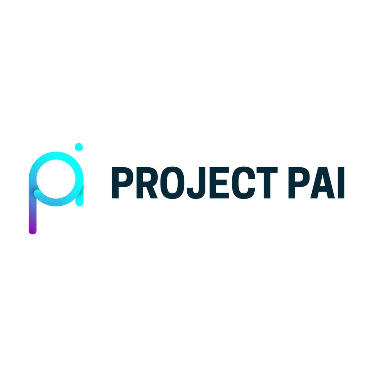 FREQUENTLY ASKED QUESTIONS | Project PAI